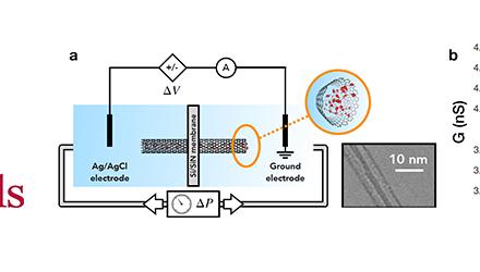 Transport ionique activé mécaniquement à travers des nanotubes de carbone de 2 nm.